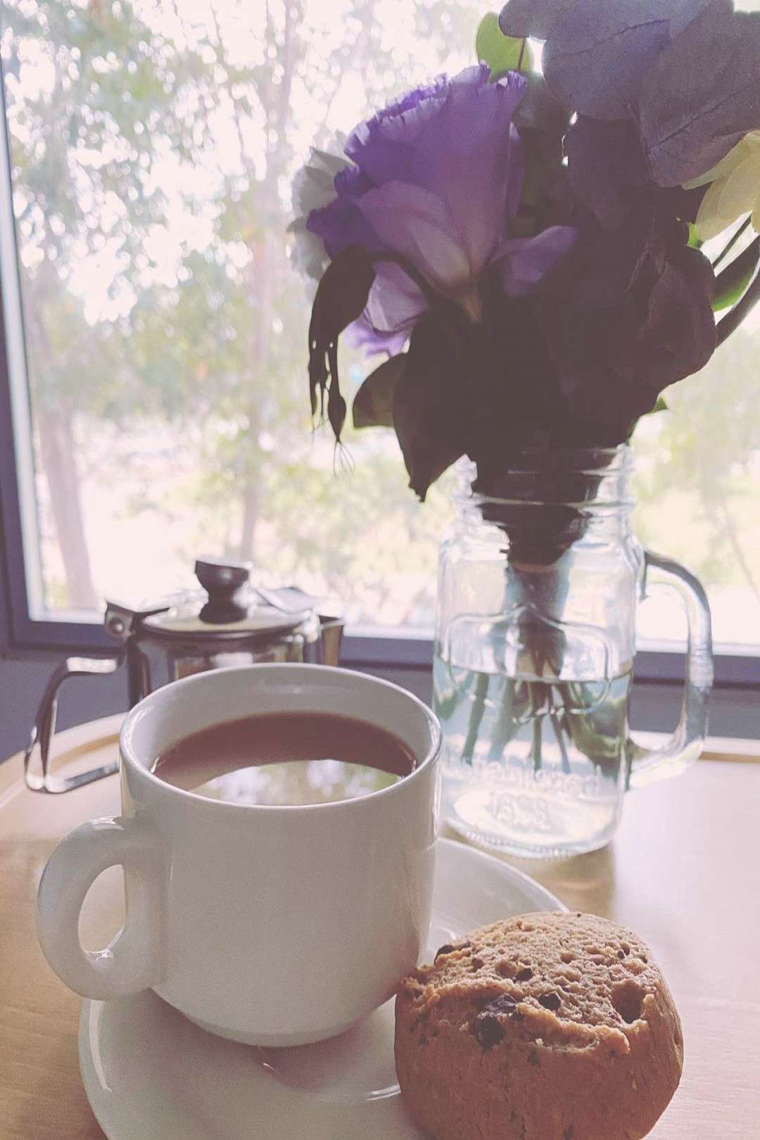 Patchouli and the Petersens on April 22 2020 plant coffee cup and